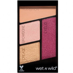 Wet N Wild - Ombre à Paupières Quad COLOR ICON - Shade 2
